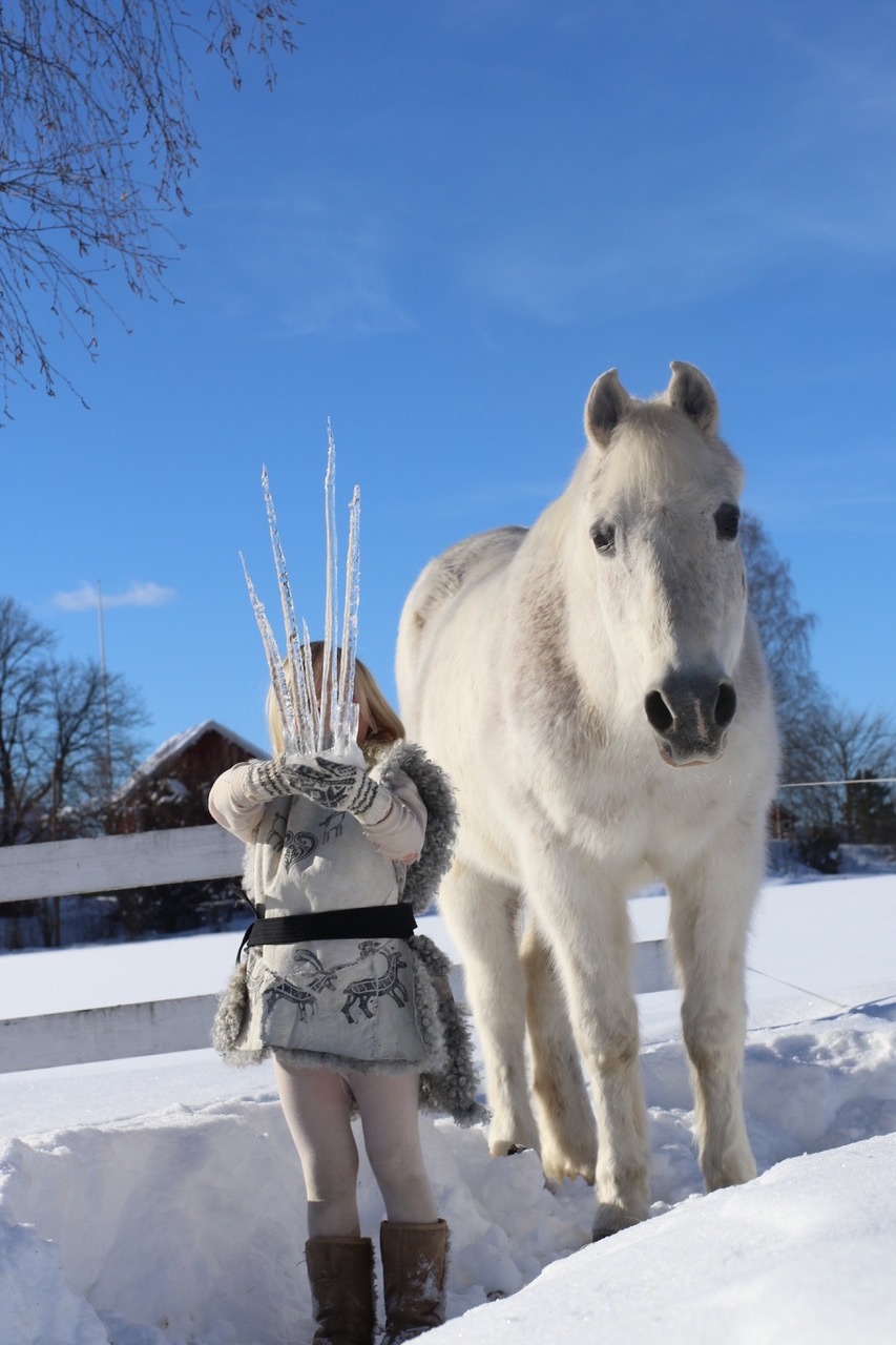 iskrone icecrown horse pony ice queen fairytale